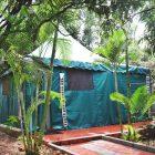 garden asia camp sight