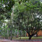 garden asia resort bangalore mysore road